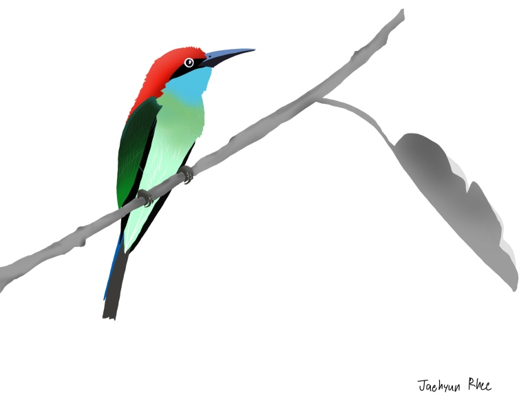 Blue_Throated_Bee_Eater