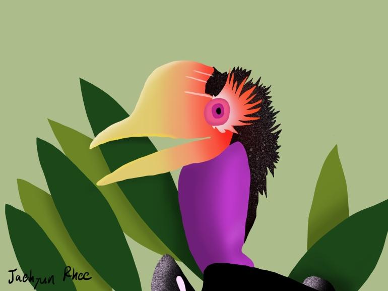 Helmeted_Hornbill