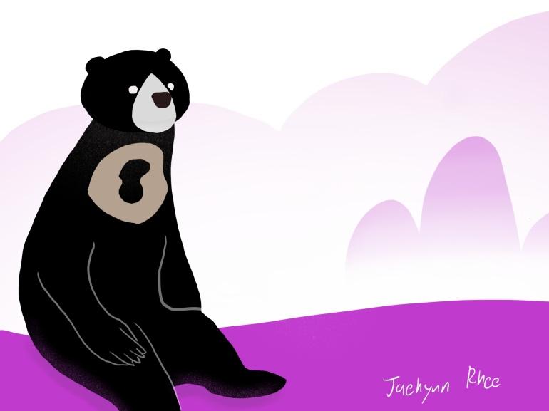 Sun_Bear